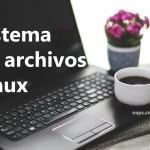 Sistema de archivos Linux: Permisos