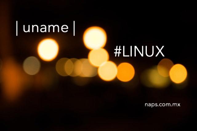 Aprende a obtener informacion del sistema en Linux